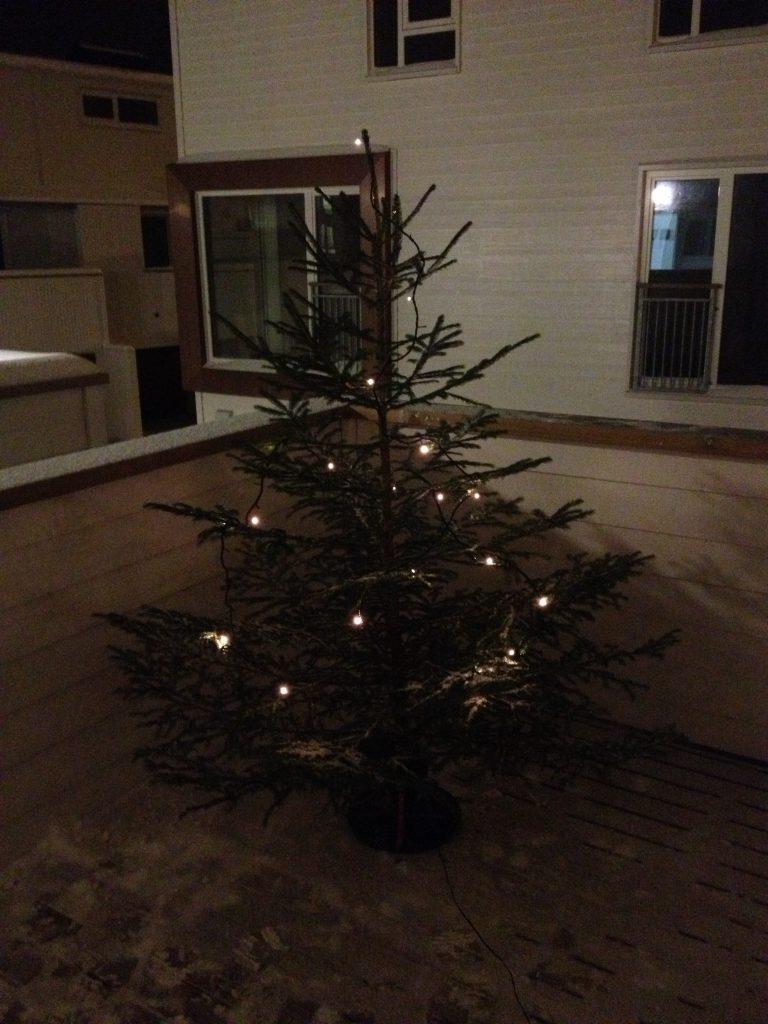 Juletre på plass i Stavanger